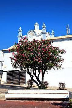Albufeira  Portugal (Been there!)