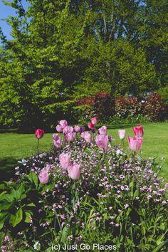 The gardens of Chateau de c Chaumont, France. International garden festival, spring summer festivals, flowers, floral tourism, spring travel, gardens.