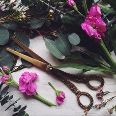 Brass Baroque Scissors #Anthropologie #MyAnthroPhoto
