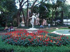 Barrio de Palermo:  Jardin Botanico Carlos Thays.- Buenos Aires, Argentina