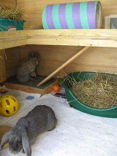 Playhouse rabbit-Love the shelf built into the wall