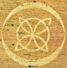 Crop Circle at Ipuacu, Santa Catarina, Brazil. Reported 31st October 2015