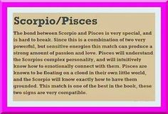 Discover and share Scorpio Pisces Romance Quotes. Explore our collection of motivational and famous quotes by authors you know and love. Pisces And Scorpio Compatibility, Scorpio And Cancer, Astrology Pisces, Scorpio Zodiac, Zodiac Signs, Scorpio Facts, Astrology Signs, Aquarius, Pisces Girl
