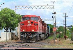 Foto RailPictures.Net: 8273 Rumo / ALL GE AC44i em São Carlos, Brasil por Lucas MR