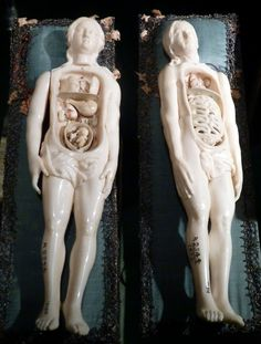 Anatomical figures  French, Ivory, 18th century  Models of a man and a woman with removable pieces. The woman is pregnant.