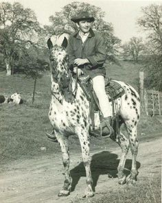 Cowboy Horse, Cowboy And Cowgirl, Doug Mcclure, James Drury, Clint Walker, Best Hero, Actor James, The Virginian, Tv Westerns