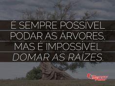 É sempre possível podar as árvores mas é impossível domar as raízes.  #ReflexaoDoDia