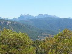 Excursión con Montserrat de fondo.