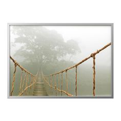 Rope Bridge Art Print featuring the photograph Jungle Journey by Skip Nall Canvas Art, Canvas Prints, Art Prints, Photo Canvas, Canvas Frame, Picture Photo, Photo Art, Rope Bridge, Juan Les Pins