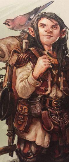 D&D Druid gnome/ halfling character