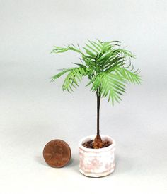 1 12th Scale Parlor Palm by Mary Kinloch IGMA Fellow | eBay