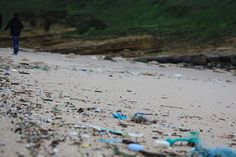 Where Plastic Really Goes When You Throw It Out: Marine Life Then Back To People