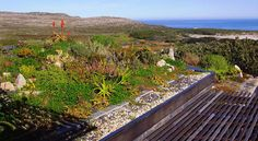 Green Roofs | House and Leisure