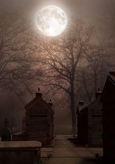#Haunting #moon light #cemetary