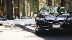 2014 Acura IlX exterior grill and front close up