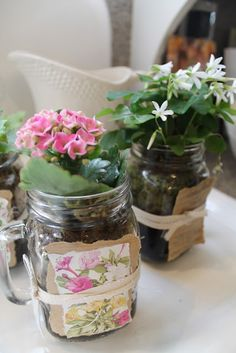 Planted mason jar mugs and seed packet party favors