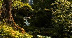 Photograph Wahkeena Falls, Oregon