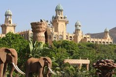 Sun City Resort in Sun City, North West Province. The extravagant Sun City Resort complex is known the world over as a tourism hotspot. The Lost City . Sun City South Africa, Sun City Resort, North West Province, Places To Travel, Places To Visit, Lost City, Panama City Panama, Culture Travel, Travel Goals