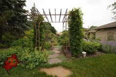 plants surrounding this arch way gives a nice feeling leading to the garden.