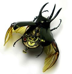 Clockwork Creepy Crawlies: US-based artist Mike Libby customises real insects   and creatures with antique watch parts and electronic components to create   new hybrid species.