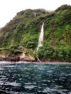 Parque Nacional Isla del Coco / Cocos Island National Park - COSTA RICA.