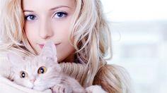 Tästä tiedät, rakastaako kissasi sinua!