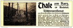 Original-Werbung/Inserat/ Anzeige 1916 - TÖCHTERPENSIONAT THALE AM HARZ - ca. 115 x 45 mm