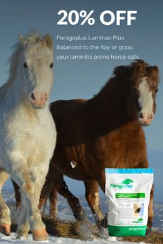 Brrrr ..... could this 20% coupon offer warm you up during this snowy spell? Forageplus forage focused balancers for laminitis prone horses and ponies are carefully formulated to match the common deficincies in the hay and grass equines eat. We use statistical data collected from many, many forage analysis we carry out each year. Our customers love this product for both shod and barefoot horses and ponies .......