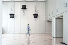 Seon Ghi Bahk Suspended Charcoal Installations 2