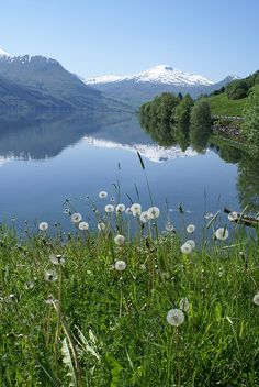 Lake Jølster, West Norway  http://www.flickr.com/photos/neil1406/