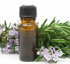 """Do you and your loved ones use essential oils? """"As more and more people look for greener alternatives for their lifestyles, the many uses of essential oils -- everything from aromatherapy to cleaning and pest control -- have had a resurgence in popularity."""""""
