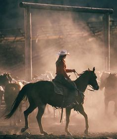 cowboys and cowgirls 10 Travel Dreams Turned Reality at Montana's The Ranch at Rock Creek Foto Cowgirl, Cowgirl And Horse, Horse Love, Mode Country, Cowboy Photography, Rodeo Girls, Western Riding, Cowboy Western, Rodeo Life