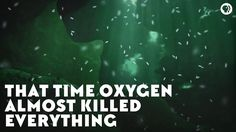 TIL abundance of Oxygen in the atmosphere once nearly wiped out the life on earth. Earth Science, Teacher Resources, Geology, Chemistry, Told You So, Education, History, Youtube, Life