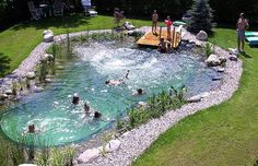 Swimming Pond/Pool. This is the design I want to build!!!!!! Would be great in my yard!!!
