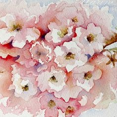 Spring on my blog today! #watercolor #sundaywatercolor #cherryblossoms #spring #winsorandnewton #danielsmith #worldwatercolorgroup #archesrough