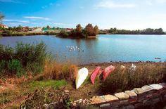 Λιμνη Ντουρούτσια στο Δέλτα του ποταμού Εβρου  - Lake Ntouroutsia Delta Evros river
