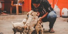 """Compassion Unlimited Plus Action (CUPA) members inaugurated the new """"Second Chance Adoption Centre"""" in Sarjapur, Bangalore last week."""