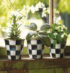 Kitchen herbs on the windowsill.