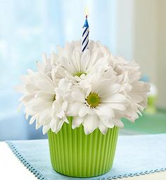 $19.99 Bloomin' Cupcake® Daisy- Cheerful arrangement of the freshest white daisy poms in a green cupcake container