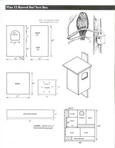 Barred Owl House Plans Great Horned Owl House Plans Barred Barn Nesting Box Bird Of Barred Owl House Plans