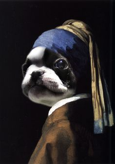 My French Bulldog Oliver shopped into one of my favorite paintings, Vermeer's girl with a pearl earring. #Frenchie #FrenchBulldog