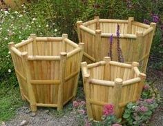 Bamboo planters...