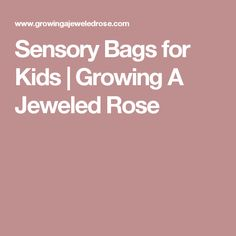 Sensory Bags for Kids | Growing A Jeweled Rose