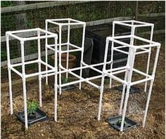 """PVC Tomato Cages: The picture shows 4 cages connected together for added support. Each cage was built using 1/2"""" PVC pipe, (4) 4 Way connectors, (4) 3 Way connectors, (4) inner caps, and (2) Tee connectors which provided the connection between each cage. Tomato Trellis, Tomato Cages, Garden Trellis, Cool Diy, Greenhouse Shade Cloth, Tomato Support, Pvc Pipe Fittings, Pvc Pipes, Best Greenhouse"""