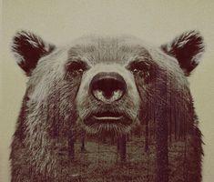 Прекрасные фотокартины с животными / Болталка / Разговоры на любые темы