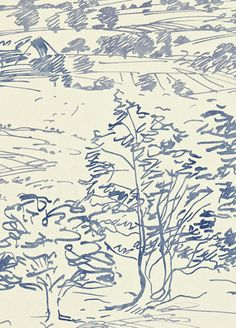 Sussex Downs Wallpaper from Sanderson