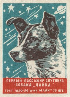"""Russian matchbox label Laika (Лайка, """"Barker""""), originally named Kudryavka (Кудрявка, """"Little Curly""""), became the first living Earth-born creature (other than microbes) in orbit aboard Sputnik II on November 3, 1957."""