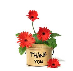 Floral Thank You Red Gerbera Daisy Flowers Postcard Thank You Pictures, Thank You Images, Thank You Messages, Thank You Quotes, Thank You Gifts, Thank You Cards, Thank You Greetings, Thank You Flowers, Flowers For You