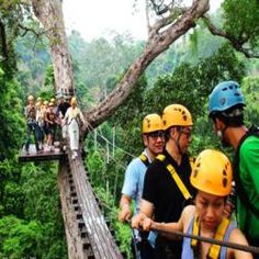 """""""See the Jungle Through the Eyes of a Gibbon!"""" Experience the beauty, magic and adventure of Thailand¿s rainforest like never before! High in the tree tops of a pristine national park, you'll glide through the jungle canopy via 3 km (1.8 miles) of thrilling wire zip-lines, scenic sky bridges and adrenaline-including abseils. This is the largest canopy zip-line tour in the world! Along the way, our highly trained and safety-minded Sky Rangers will share their local knowledge of the rainforest…"""