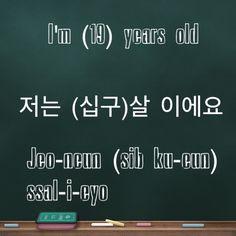 Learning Korean / Greetings / I'm (19) years old